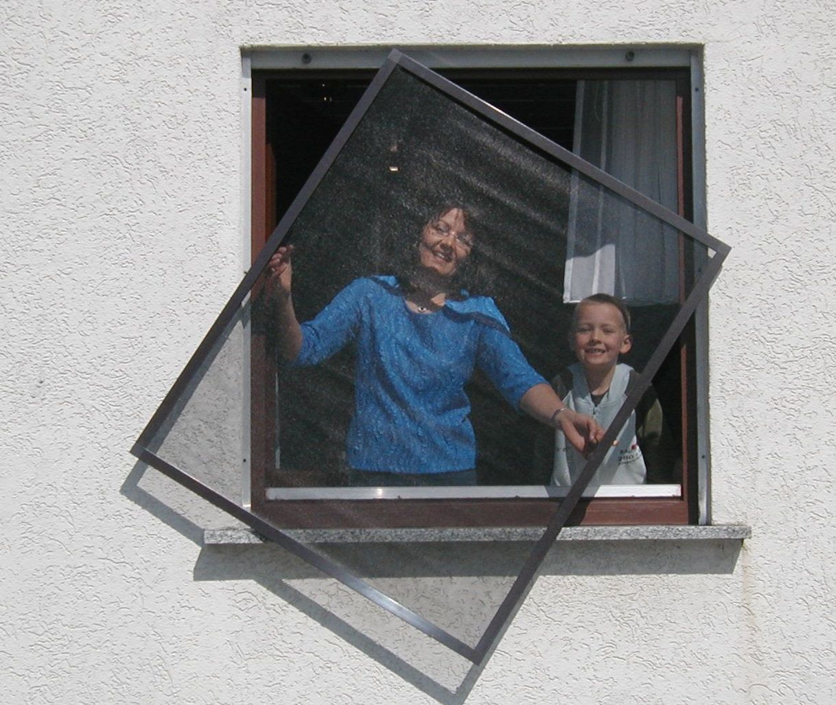 Insektenschutz Fliegengitter Fenster in dunkelbraun;