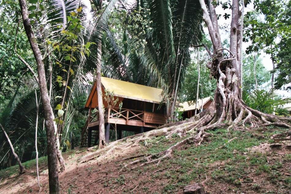 Macal River Camp | Hier übernachten Sie auf Ihrer Dschungeltour. | © Karibik Inside