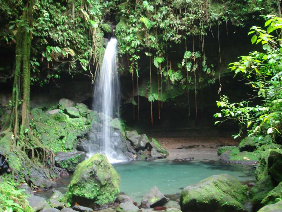 Dominica | Emerald Pool | © Calibishie Lodges