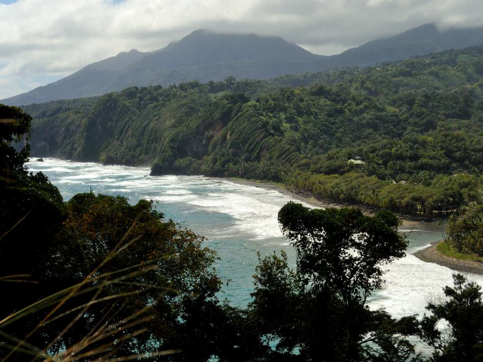 Dominica | Cabrits Nationalpark | © Günter Klos