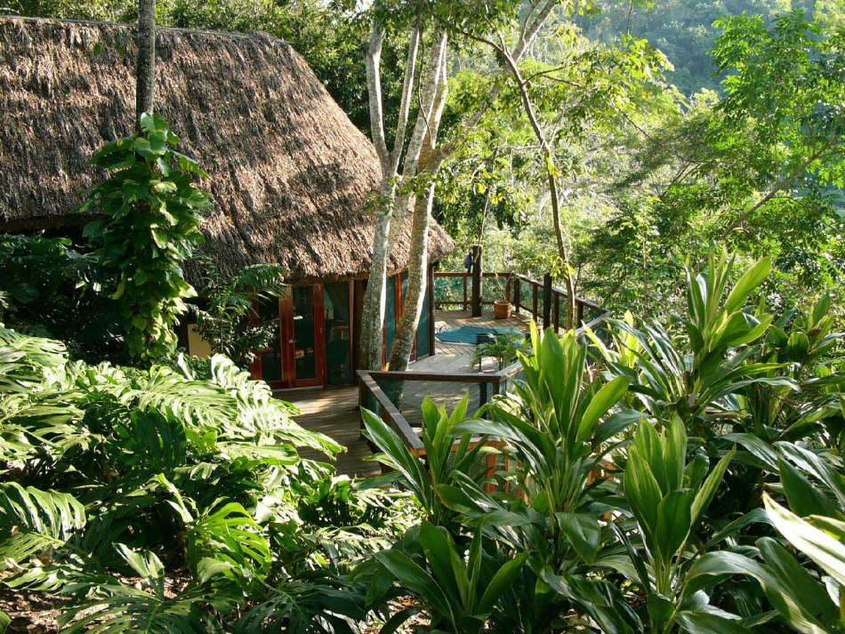 Chaa Creek Cottages   Treetop Cottage   © Chaa Creek Cottages