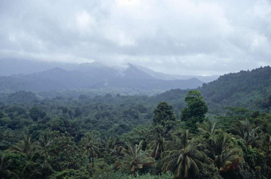 Dominica | Unterwegs auf dem WNT - Segment9 | © Karibik Inside