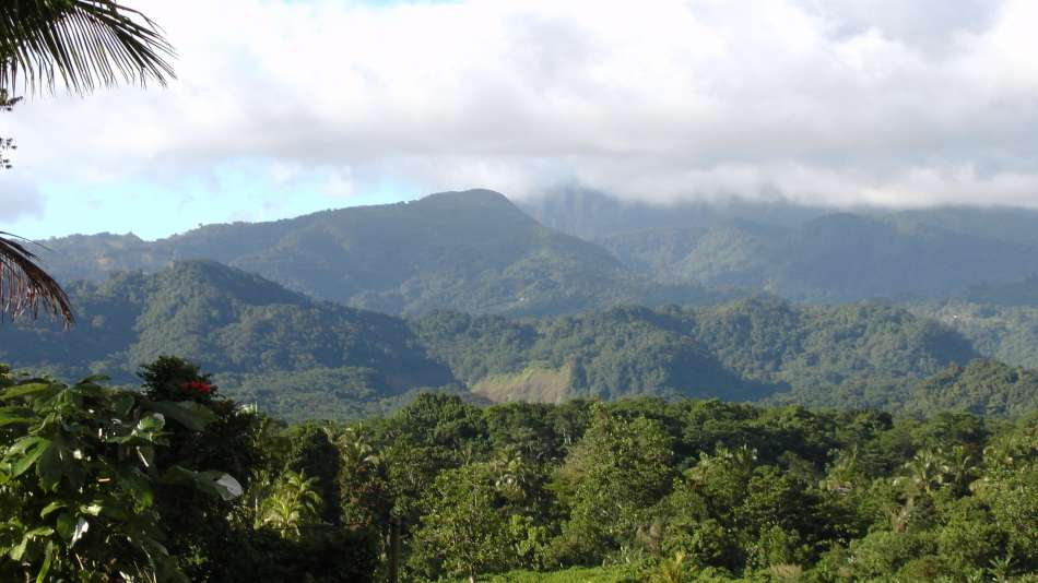 Dominica | Auf dem Perdu Temps Pfad | © Günter Klos