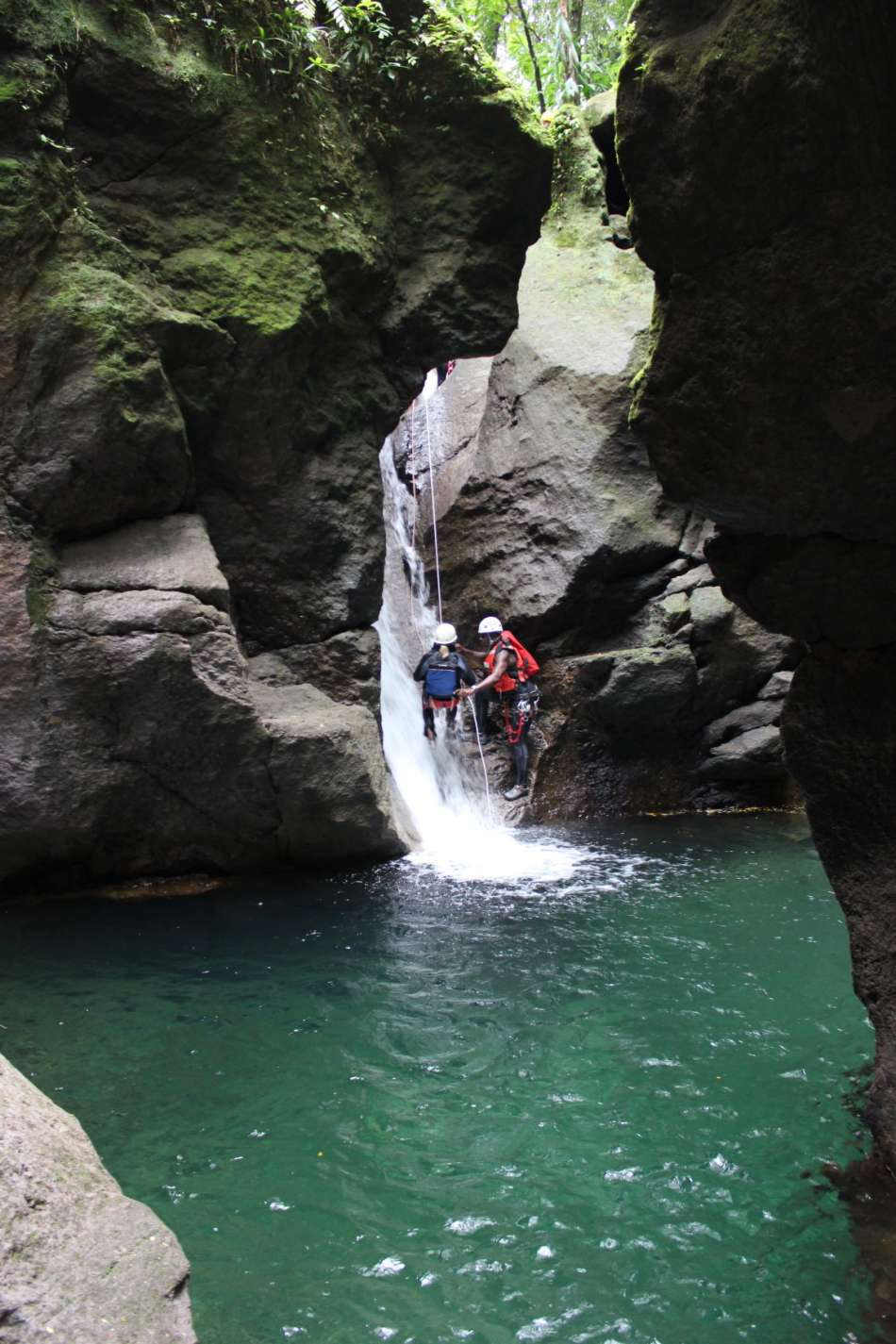 Dominica | In der Ti Tou Gorge | © Cocoa Cottage