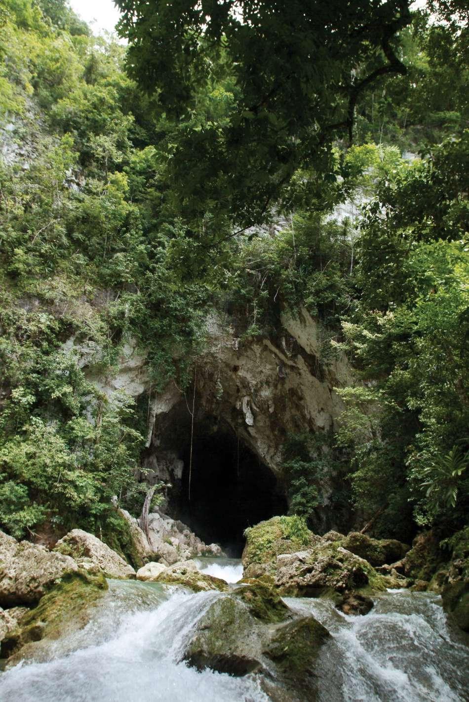 Hokeb Ha - Blue Creek Cave   Höhleneingang   © Turtle Inn