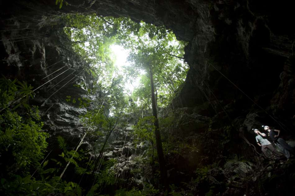Lost World Cave | Blick zum Tageslicht | © Caves Branch Adventure Company & Jungle Lodge